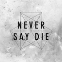 Never Say Die Records Profile Image