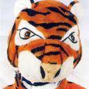 tataata Profile Image