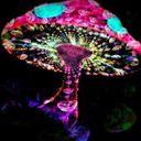 DJ PHYRUS Profile Image