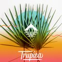 Trupica Profile Image