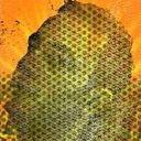 Glasscow Profile Image
