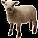 rudenoise Profile Image