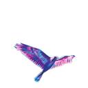 discoamore Profile Image