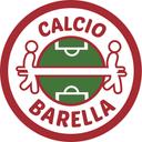 Calcio Barella Profile Image