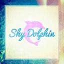 Shy Dolphin