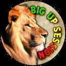 Big Up Session on Mixcloud