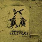 Cala Vega Profile Image
