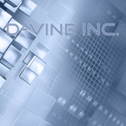 D-Vine Inc. Profile Image