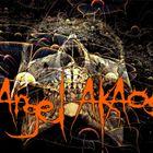 Angel AKAos  VINYL DJ  (UK) Profile Image