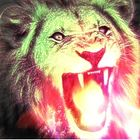 Lion_The_Ferocious_Beats Profile Image