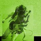 The Dandelion Set Profile Image