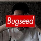 Bugseed Profile Image