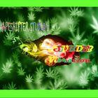 DJ Shapeshifter Profile Image