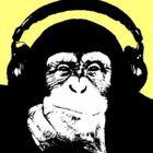 It's A Monkey Profile Image