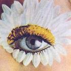 Pattern & Shape Profile Image