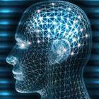 Ttrader Profile Image