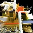 datrus Profile Image