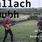 DallachDubh Profile Image