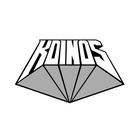 K-DINOS  Profile Image