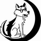 Waylin B. Wolf Profile Image