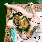 Veronica Krause Profile Image