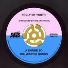 FollyofYouth Profile Image