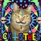 Jack Stresig Profile Image
