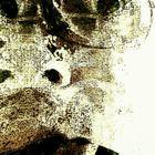 Struct 7 Profile Image