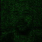 Binia Profile Image