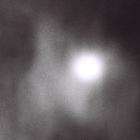 QLA Profile Image