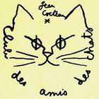 Kim Ngo Profile Image