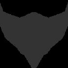 Squadron C&S Profile Image