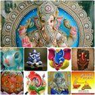 Anu Sharma Profile Image