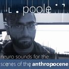 ˪ . poole ˙ ˺ Profile Image