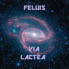 Feluis Profile Image