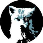 spiel:feld Profile Image