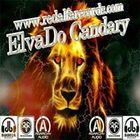 Candary Profile Image