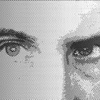 padandy Profile Image