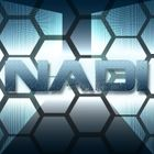 DJNadiOfficial Profile Image