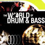 DJ SS & MC Warren G @ WORLD OF DRUM & BASS TOUR 26.06.1999 Bierhübeli Berne
