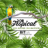 Tropical House 2018 - Yossi Magnezi & Omri Mordechai Bit Djs