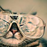 A tudomány szerint tényleg okosabbak azok, akik szemüvegesek - #érdekeshírek