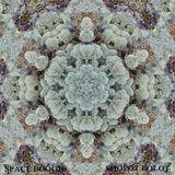 Space Boogie - Shopot Bolot  pt 2 (2K18)