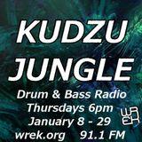 Kudzu Jungle 6