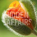 ++ HIDDEN AFFAIRS | mixtape 1805 ++