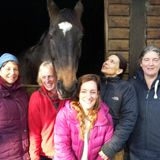 All Things Equine with a Twist - Saturday 1st February 2014
