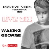 Positive Vibes Radio Show / 008 - Waking George Live Mix