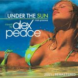UNDER THE SUN _ 2001 Club Grooves