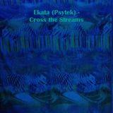 Ekata (Psytek) - Cross the Streams (Forest)