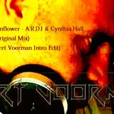 Sunflowers - A.R.D.I. and Cynthia Hall (Original mix) (Bert Voorman Intro Edit)